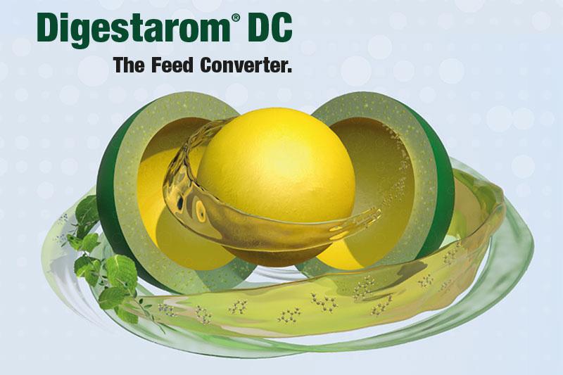 Digestarom<sup>®</sup> DC – für optimalen Darm-Schutz