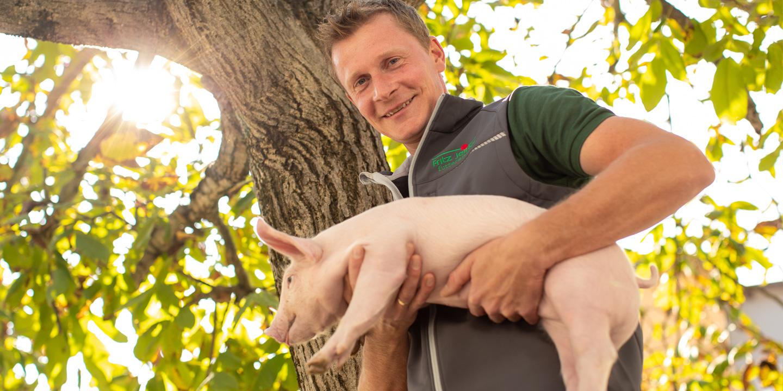 Schwein - Fritz Jeitler Futtermittel