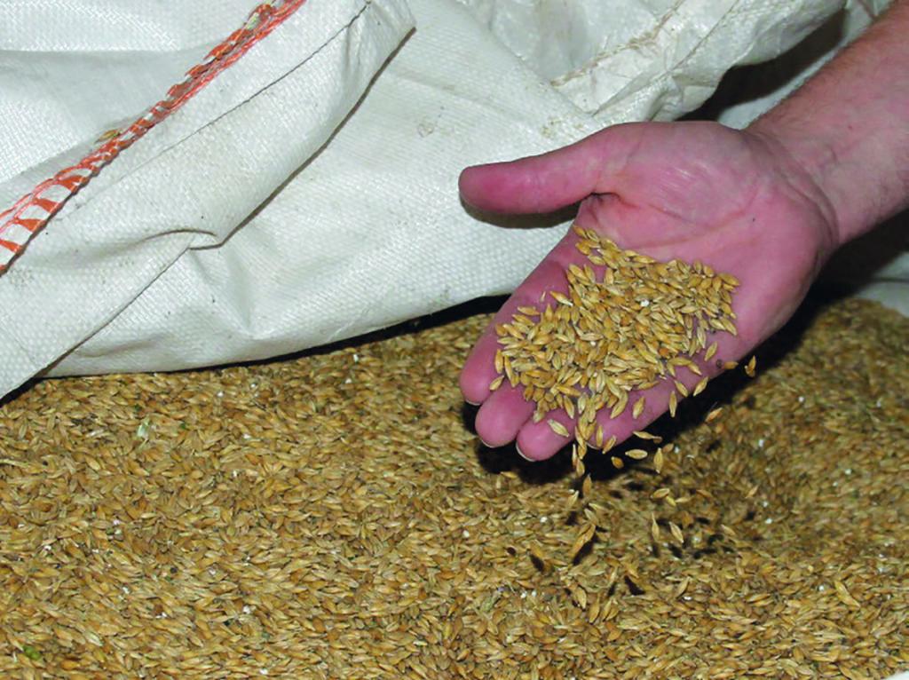 Getreide richtig und sicher lagern!